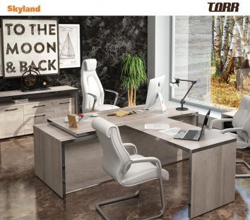 Vadovo biuro baldai